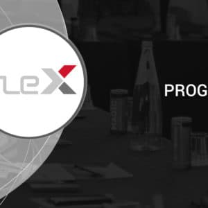 How does FLEX work? Find out at a Base Programming Course in Łódź, Poland